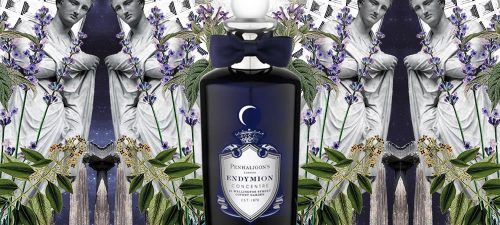 Fragrance Of The Week: Penhaligon's Endymion Concentré